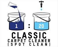 ValetPRO Classic Carpet Cleaner
